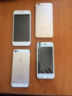Apple-9_75746.jpg