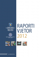 Raporti_Vj_90916.png